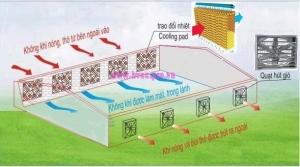 Cung cấp thi công lắp đặt quạt thông gió làm mát tại nghệ an